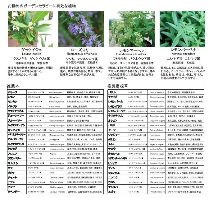 ガーデンセラピーにおすすめの植物
