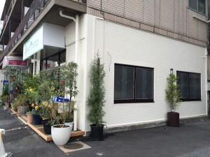 グリーンセラピー店舗外壁改修後1