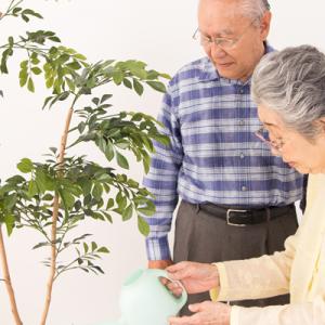 老人ホーム・デイサービスセンター等の高齢者福祉施設 向け