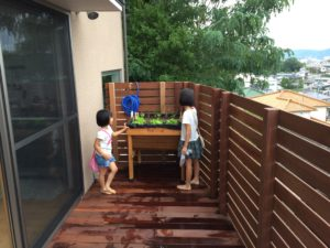 ウッドデッキバルコニーに菜園ベジトラグ1