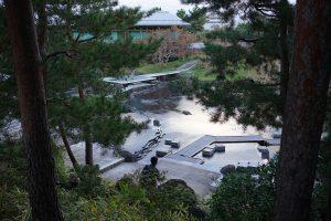 ガーデンサービス研究会京都研修6